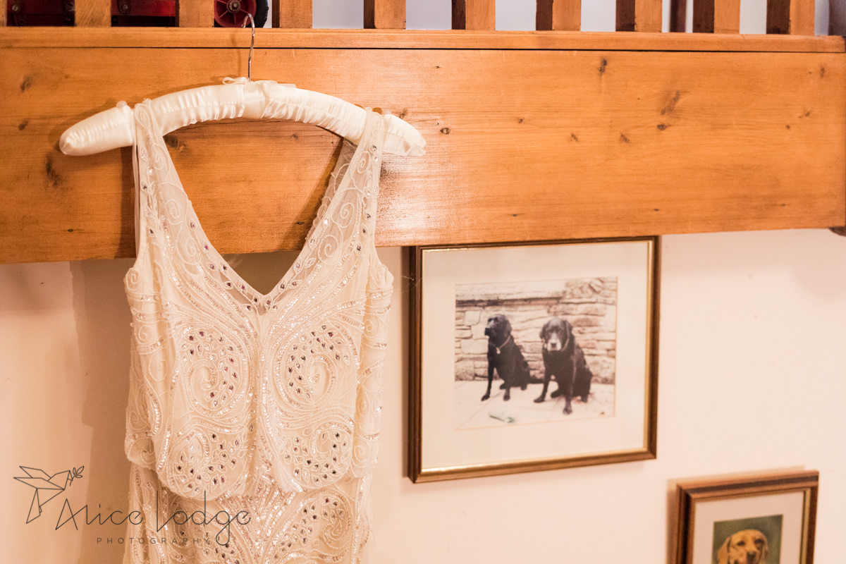 wedding dress hanging next to picture of dogs